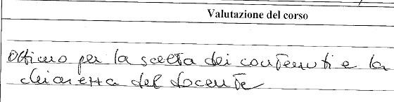 Giudizio Corso web writing